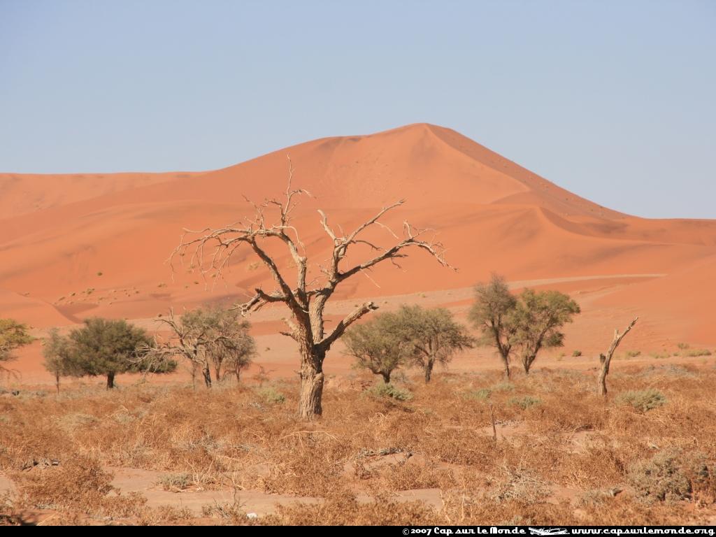 Les dunes ocres de Sossusvlei Geo.fr
